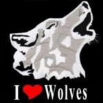 TWP-WOLF's Avatar